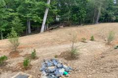 Commercial Landscaping - Pond